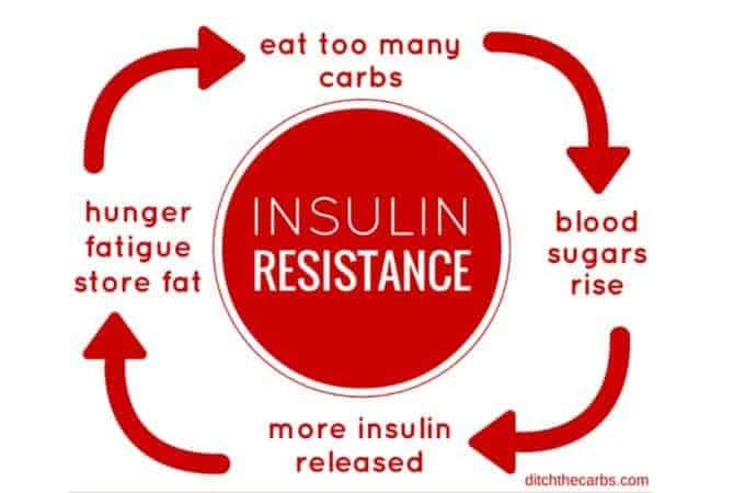 low-carb for diabetes insulin resistance